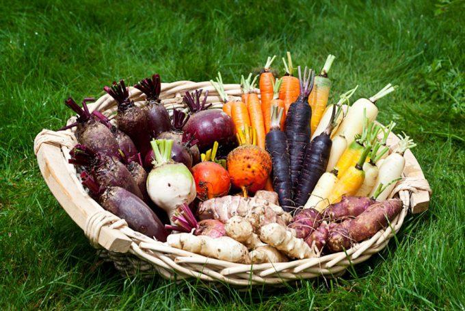 Tratamiento de tubérculos y hortalizas