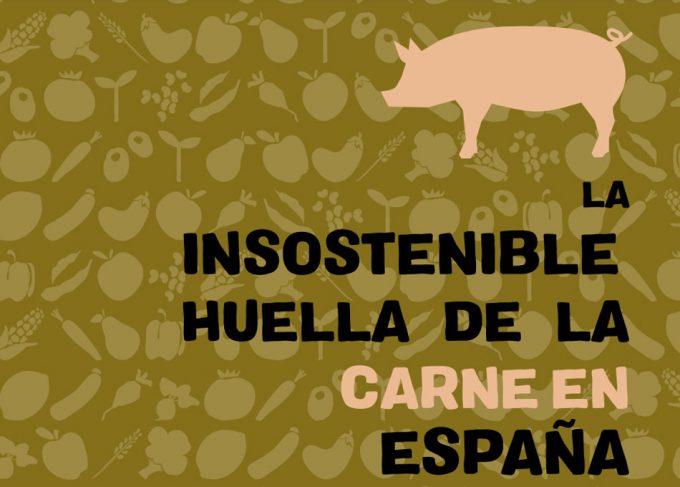 Producción de carne en España