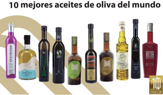 Mejor Aceite de Oliva Virgen Extra 2018