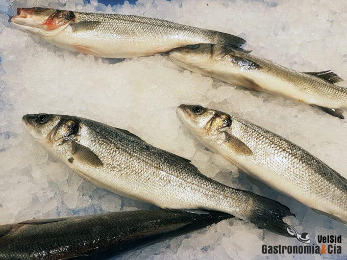 Pesca de arrastre, estudio y resultados