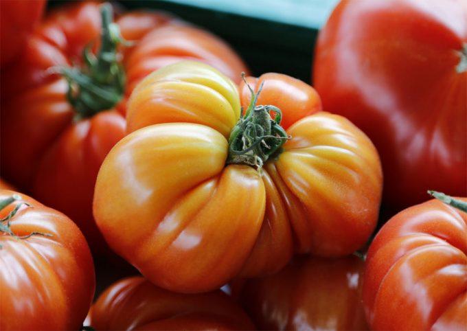 Color de la piel humana como biomarcador del consumo de frutas y verduras