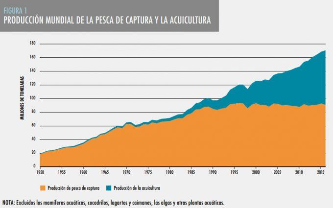 Acuicultura en el mundo, datos y cifras