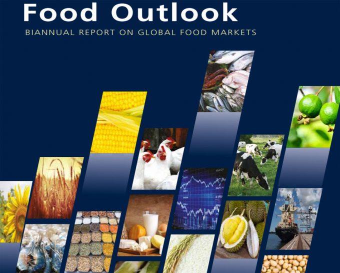 Situación de la producción y mercado de los alimentos en el mundo