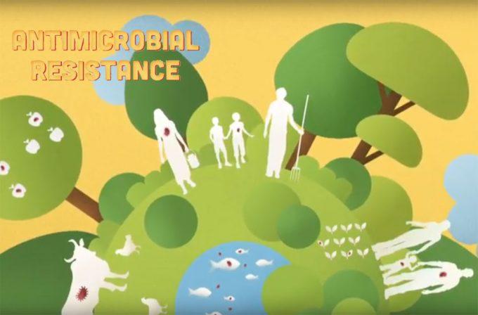 Frenar la resistencia de las bacterias a los antibióticos