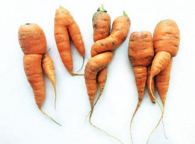 Frutas y verduras feas son perfectamente comestibles y seguras
