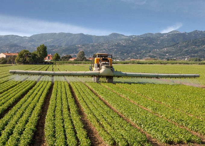 Se utilizan productos fitosanitarios de riesgo en la Unión Europea