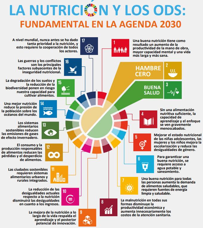 Como cumplir los Objetivos de Desarrollo del Milenio