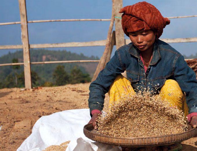 Informe de la FAO sobre el hambre en el mundo 2018