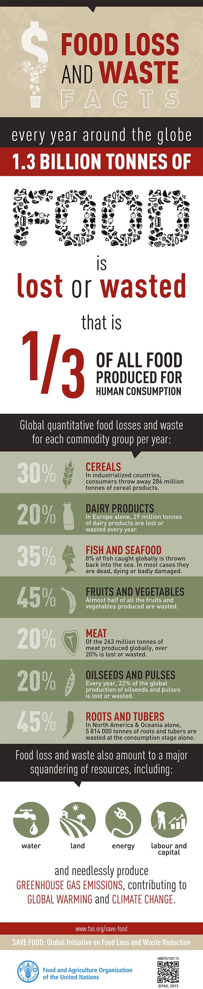 Documento de la FAO sobre el desperdicio alimentario