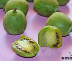 Qué es el kiwiño o kiwi enano