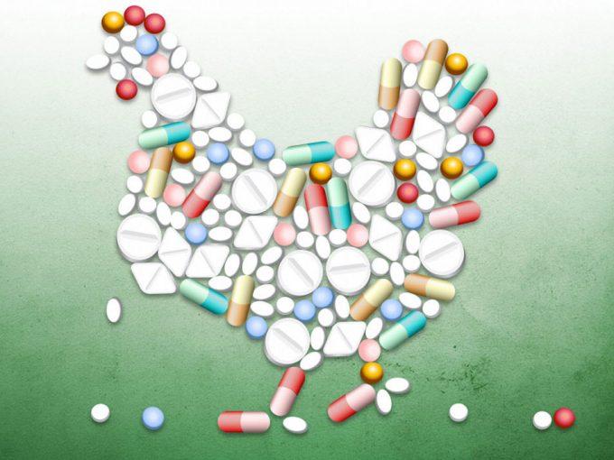 No utilizar antibióticos en animales si no es necesario