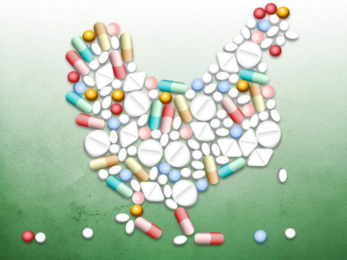 Los antibióticos se usan de forma incorrecta en la agricultura y la ganadería