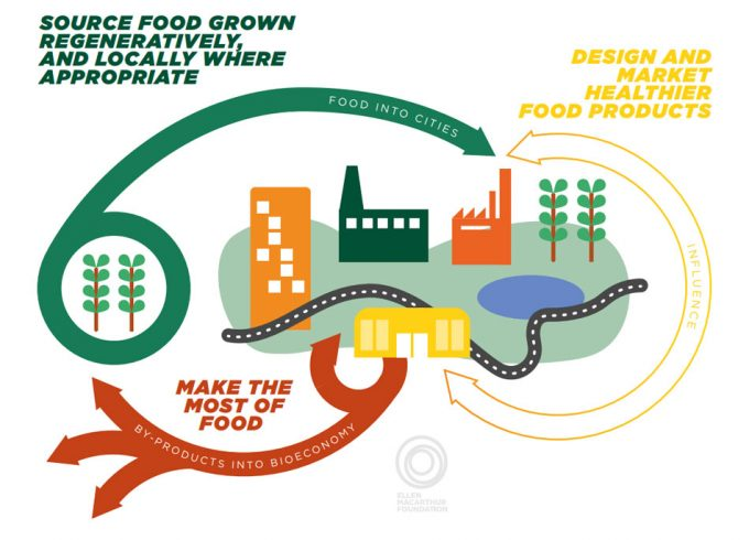 Economía circular aplicada a la producción alimentaria