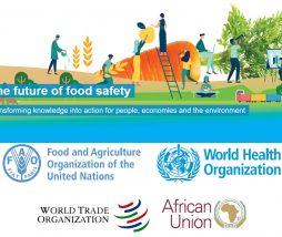 Mejorar la seguridad alimentaria a nivel mundial