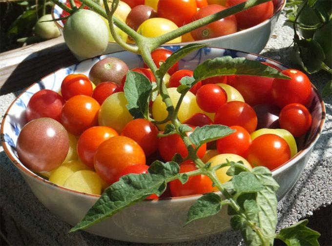 Dieta saludable y sostenible