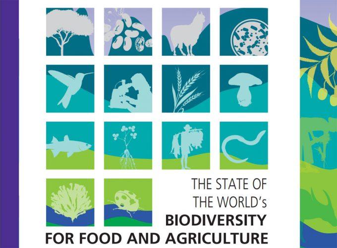 Seguridad alimentaria y biodiversidad