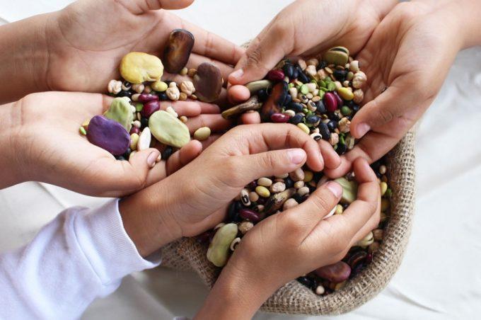 Propiedades saludables de las legumbres