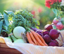 Alimentos ecológicos en Europa