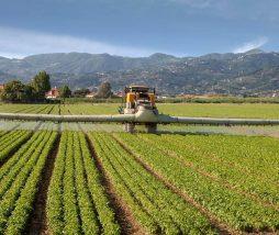 Pesticidas peligrosos aprobados en la UE