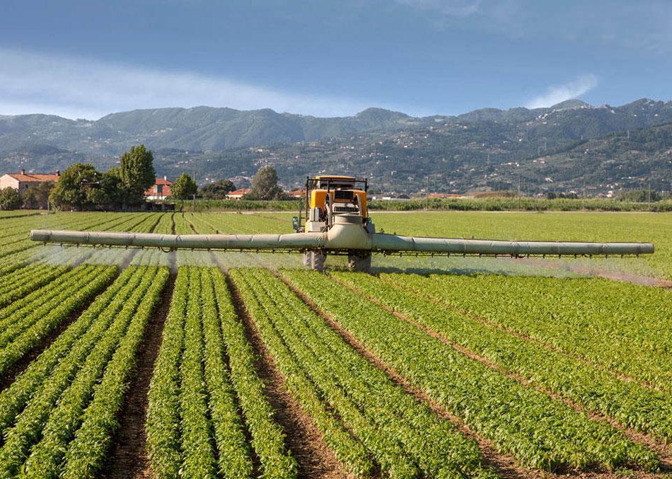 La CE amplía el permiso de varios pesticidas controvertidos