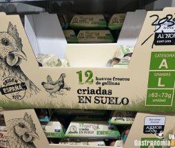 Salud de las gallinas ponedoras