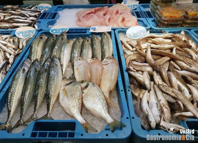 Pescado y marisco procedente de cultivo celular