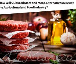 Futuro de la carne tradicional