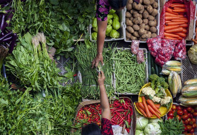 Alimentos seguros para el planeta