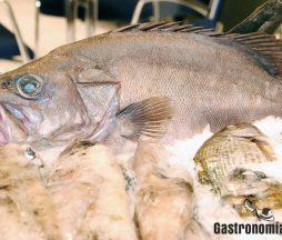 Carne de pescado de origen vegetal