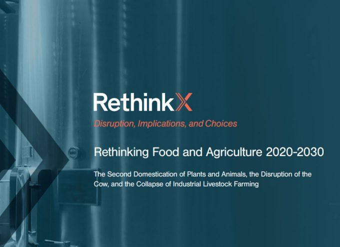 Informe RethinkX sobre la producción ganadera y lechera para las próximas décadas