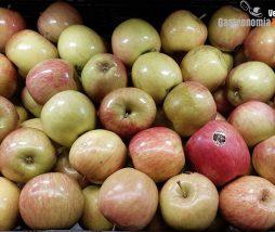 Comunidades bacterianas presentes en las manzanas