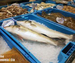 Metilmercurio en el pescado