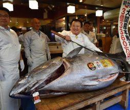 Mercado de Pescado de Toyosu (Japón)