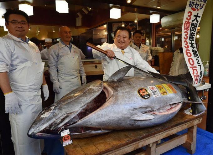 Rey del atún paga 1.8 mdd por ejemplar