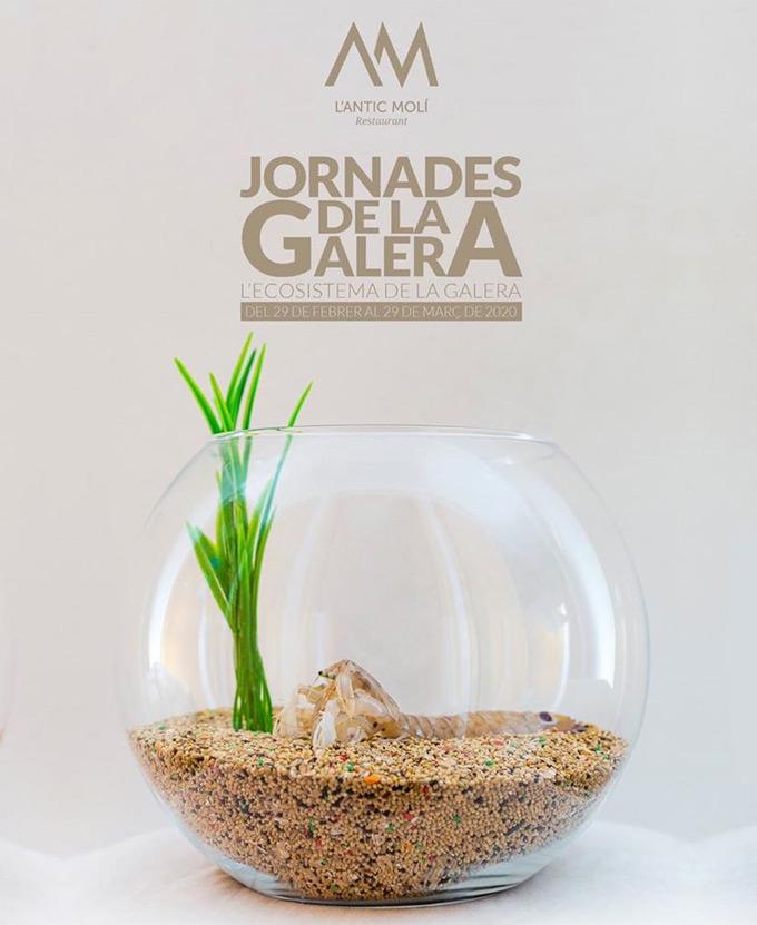 El Ecosistema de la Galera