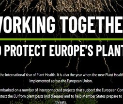 WORKING TOGETHER TO PROTECT EUROPE'S PLANTS