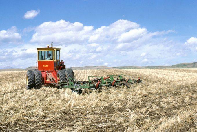 Aumento de la superficie de tierra destinada a la agricultura ecológica
