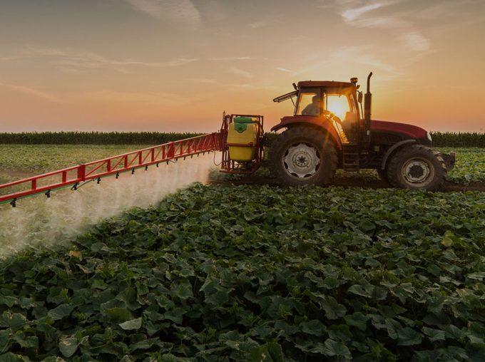 Combinación de pesticidas en los alimentos, posibles riesgos