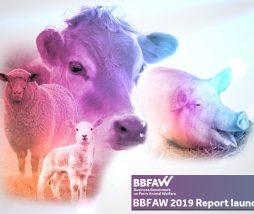 Business Benchmark on Farm Animal Welfare 2019