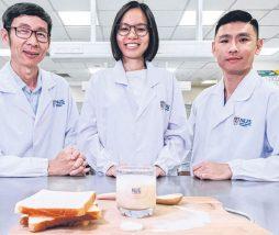 Bebida probiótica con base no láctea