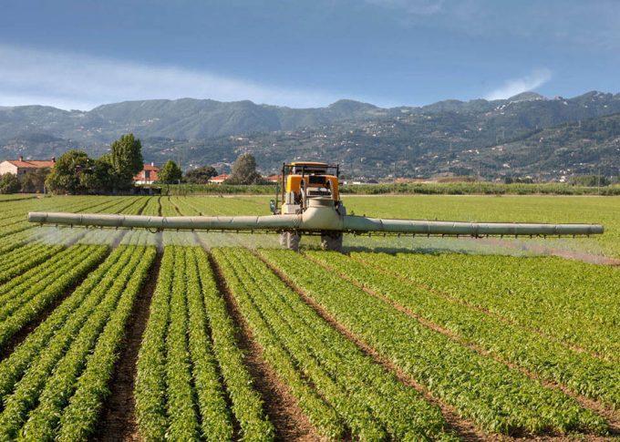 Riesgos de los pesticidas para la salud