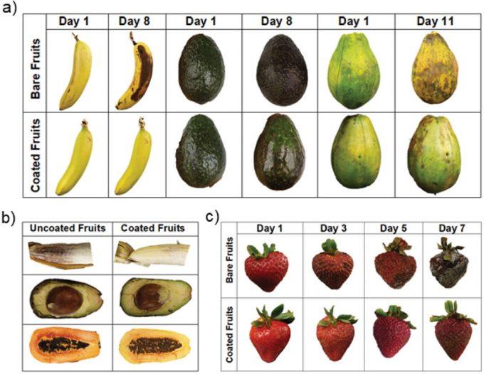 Proteínas de huevo para extender la vida útil de frutas y verduras