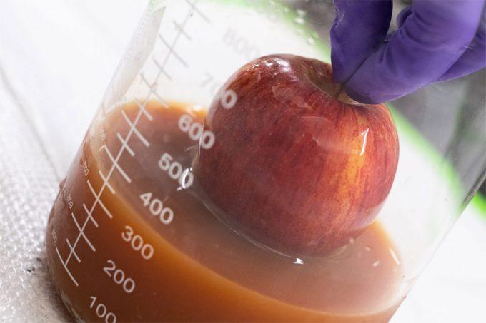 Ampliar la vida útil de frutas y verduras