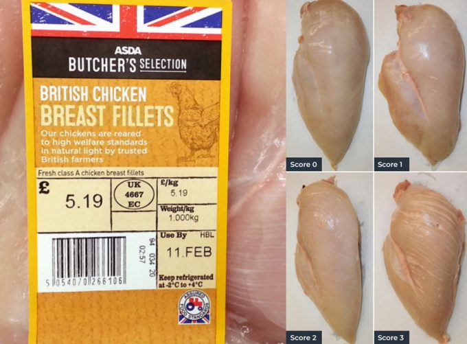Calidad de la carne de pollo