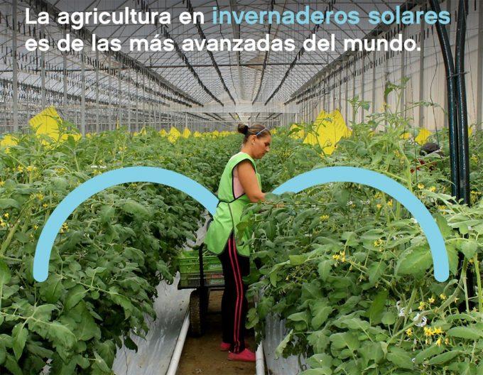 Agricultura en invernadero