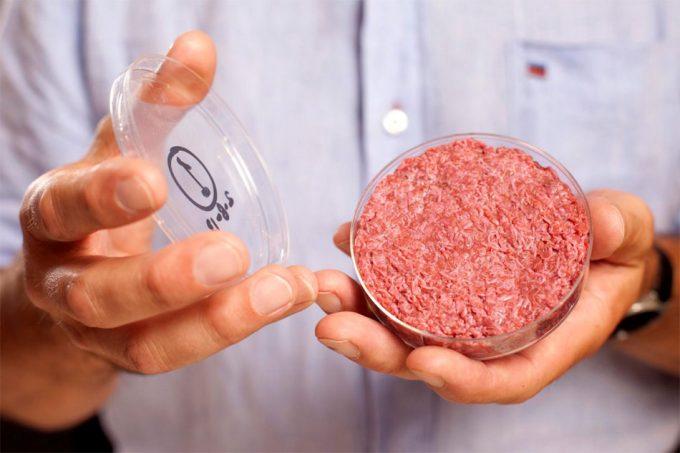 Carne de pollo de cultivo celular