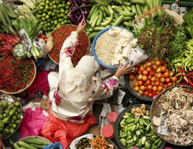 Promoción mundial de frutas, verduras y hortalizas