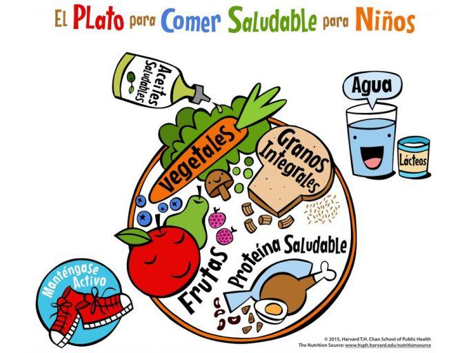 El Plato para Comer Saludable para Niños