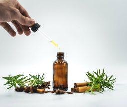 Aceites esenciales para conservar alimentos