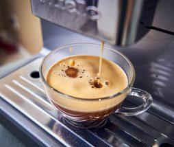 Cafeína y sistema cognitivo